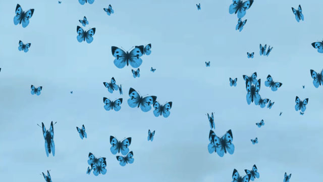 Butterfly Particle System